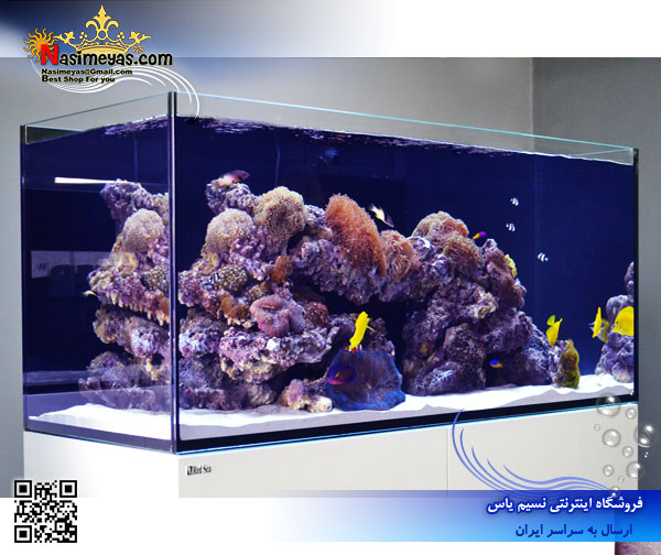 Red Sea reefer xl525